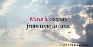 Miracles and an Ant Farm